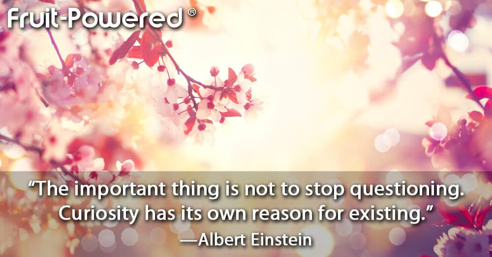 The important thing is not to stop questioning. Curiosity has its own reason for existing.