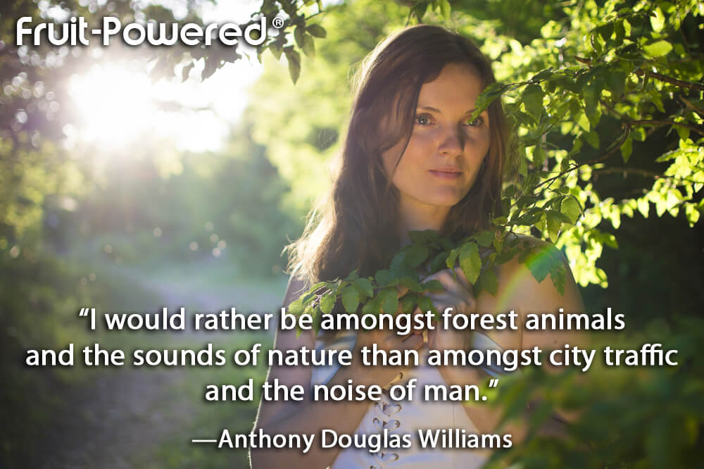 I would rather be amongst forest animals and the sounds of nature than amongst city traffic and the noise of man.
