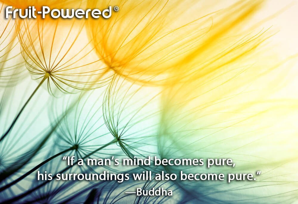 If a man's mind becomes pure, his surroundings will also become pure.