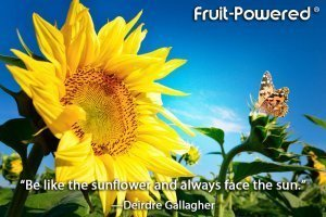 Be like the sunflower and always face the sun.