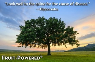 Look well to the spine for the cause of disease.