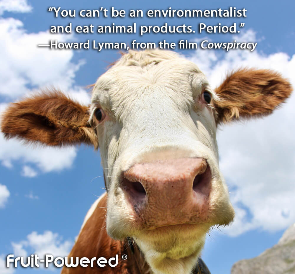 You can't be an environmentalist and eat animal products. Period.