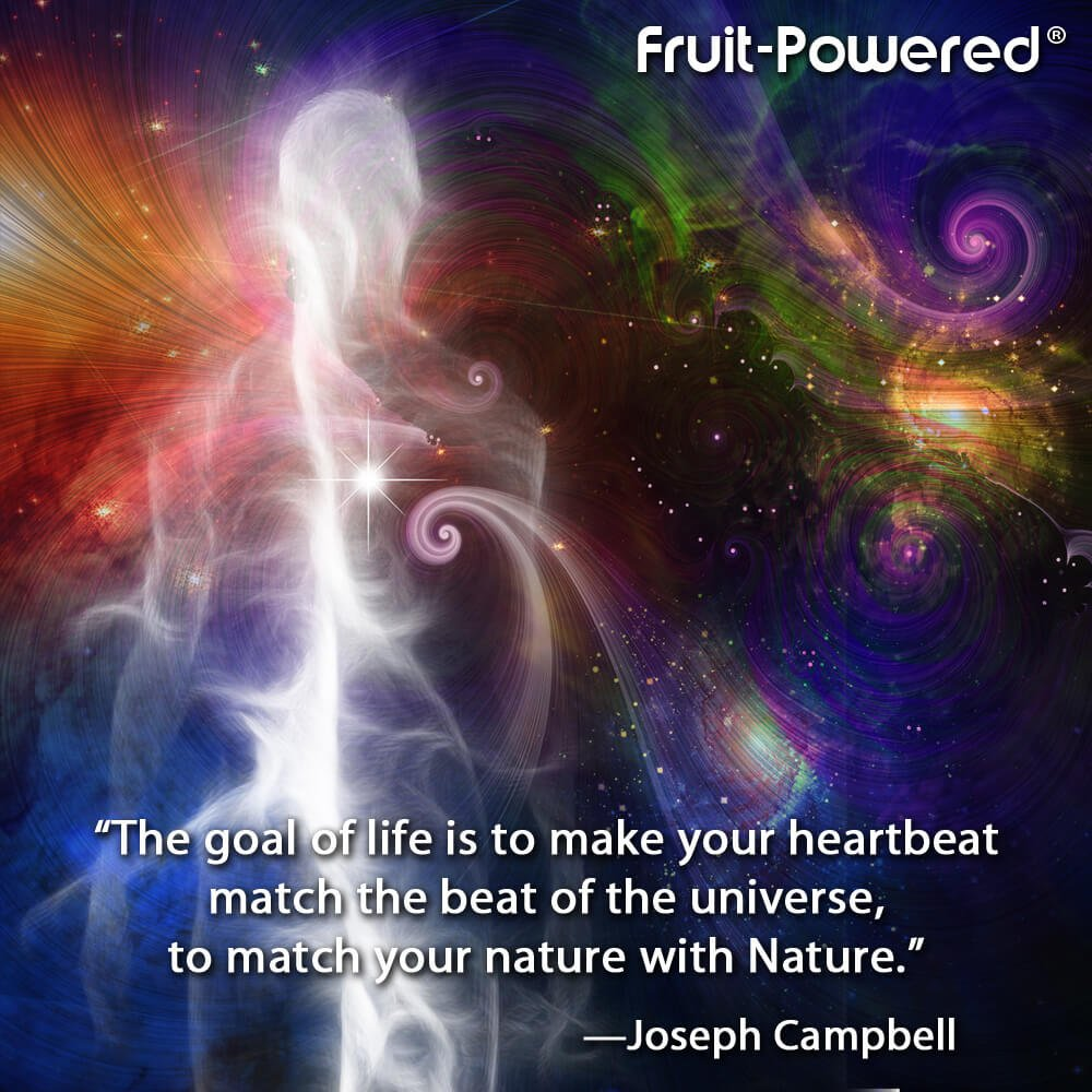 The goal of life is to make your heartbeat match the beat of the universe, to match your nature with Nature.