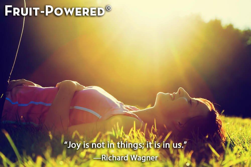 Joy is not in things; it is in us.