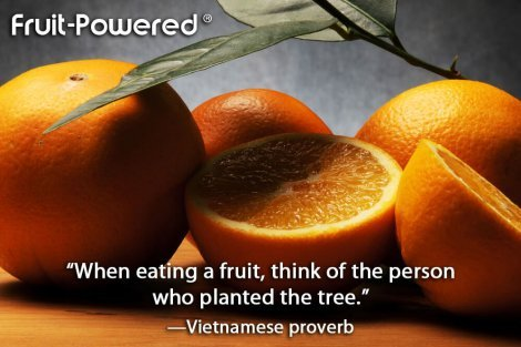 When eating a fruit, think of the person who planted the tree.