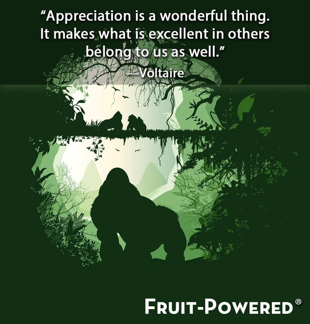 Adyashanti Quotes Fruitpowered Quote 2016