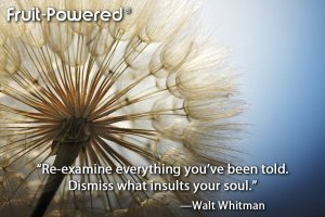Examine everything you've been told; dismiss what insults your soul.