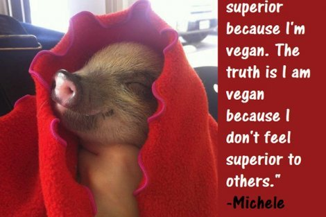 Being Vegan poster featuring Michele McCowan