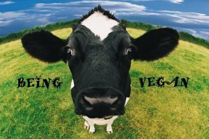 Being Vegan banner featuring a cow