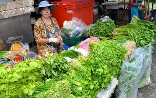 Varieties of greens are stacked on a table at Muang Mai Market in Chiang Mai, Thailand