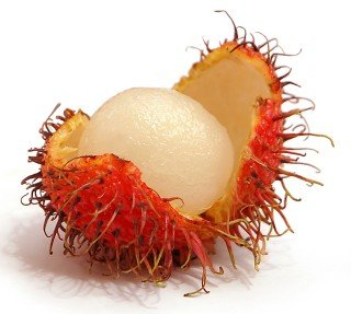 Rambutan against a white background