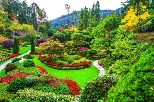 A large, richly colorful healing garden