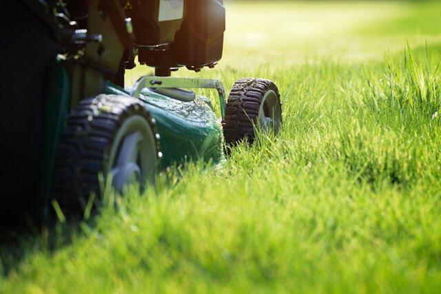 A green push lawnmower cuts grass