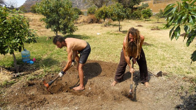 Matthew David tends to soil in a field in Mexico