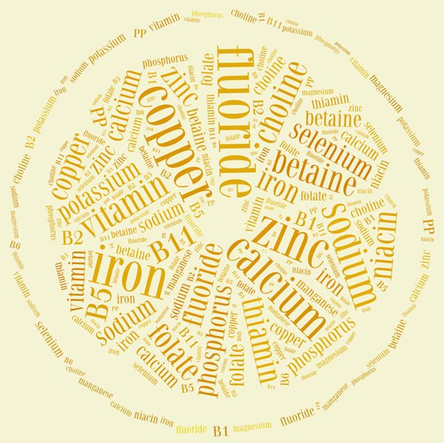 Nutrient word cloud in the shape of an orange