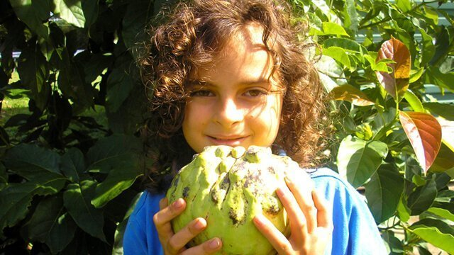 Raising Happy and Healthy Children on a Fruit Diet