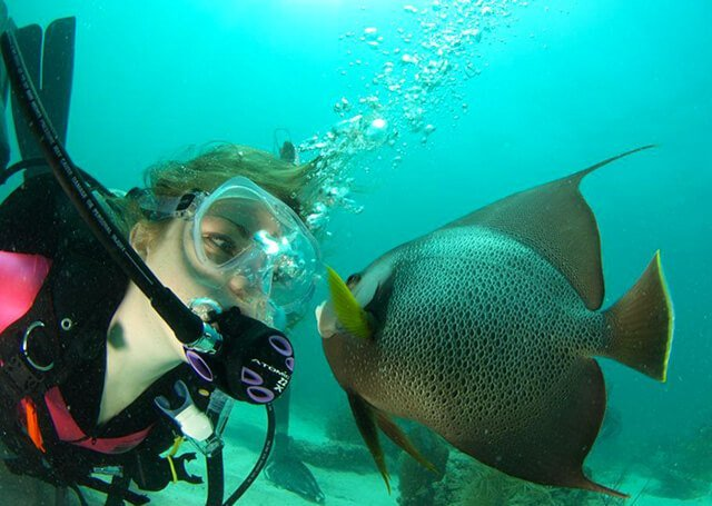 Stephanie Kent is examines fish underwater