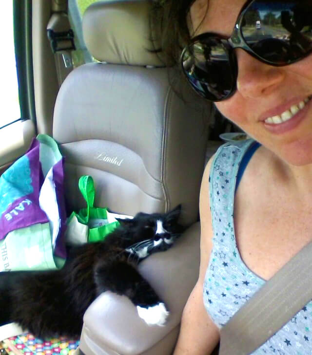 Joy King in her RV with her cat, Harley, in the front seat