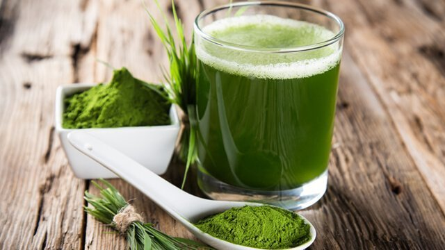 A small glass of barley grass juice with powder and grass blades