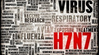 Word cloud featuring influenza