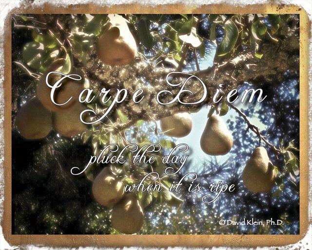 "David Klein art ""Carpe Diem"""