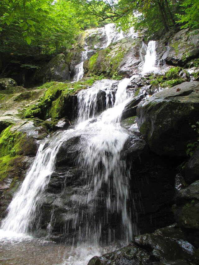 Photo from a waterfall hike by John Fallucca
