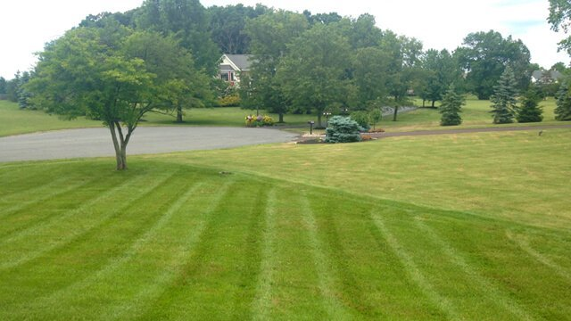 Lawn-Care Secrets Revealed for a Cut Above the Rest