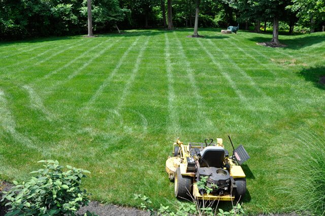 Korey Constable makes the first stripe in mowing a lawn