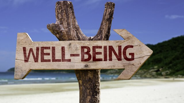 """The word """"well-being"""" painted on a wooden sign with a beach in background"""