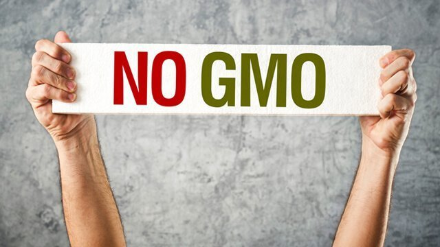 Big GMO Agriculture Is Destroying the Health of Maui and the World