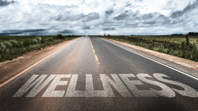 "The word ""wellness"" written on a road"