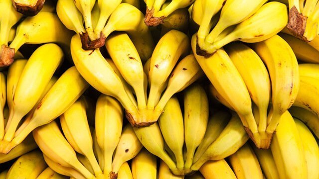 40,000 Bananas Down and Thriving on a Raw Food Diet