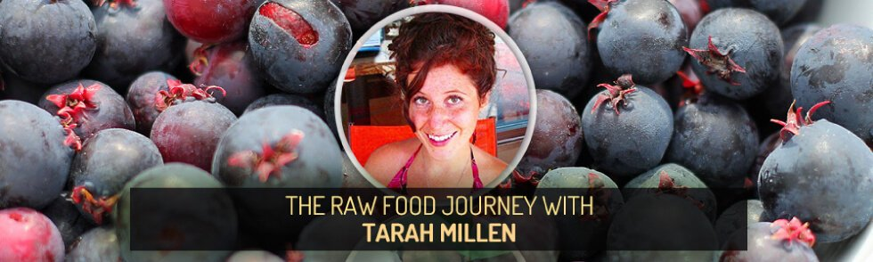 Guest Stories banner for The Raw Food Journey with Brittany Taylor