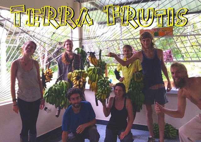 Volunteers at Terra Frutis