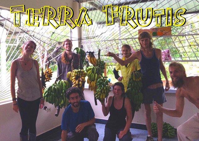 Volunteers at Terra Frutis