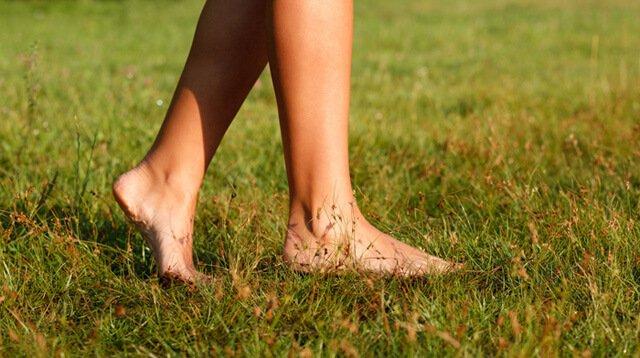 Female feet walk barefoot on grass