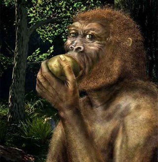 An illustration of an early man eating fruit