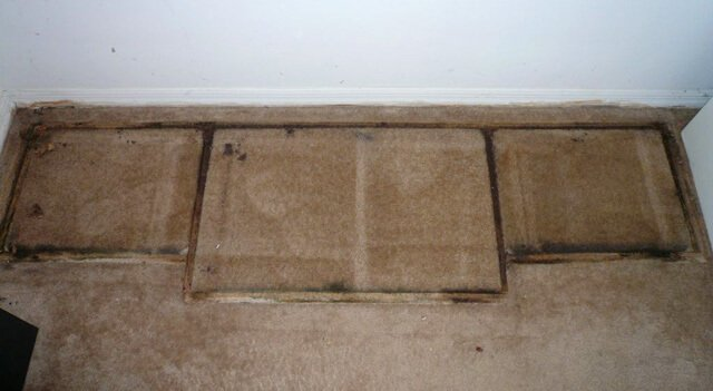 Mold from an entertainment center in Tasha Lee's former apartment