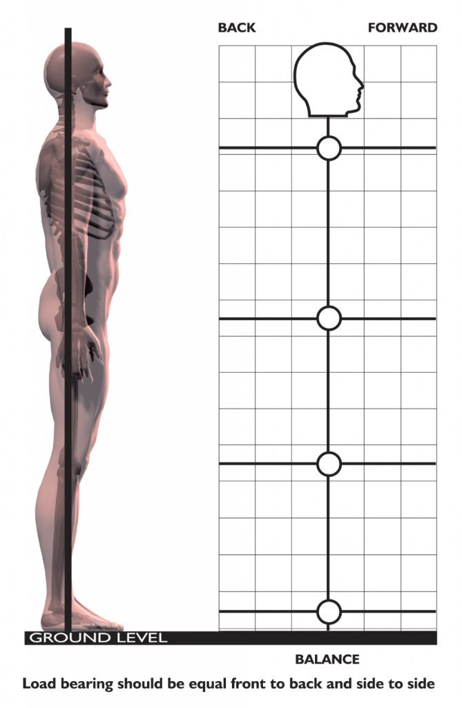 Roger Posture - side view - Posture Exercises Method - Fruit-Powered