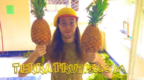 Raw Vegan Transformations - Peter Csere - Terra Frutis - holding pineapples - Fruit-Powered