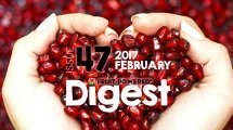 February 2017 Fruit-Powered Digest greetings