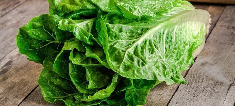Tender Greens Are the Greens of Choice for Our Bodies