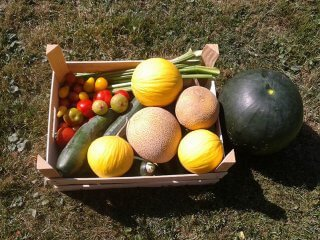 Melons and vegetables in a wooden crate