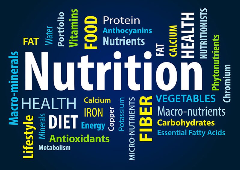 The word nutrition in a word cloud