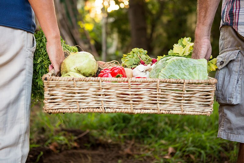 Two carry a crate full of fruits and vegetables