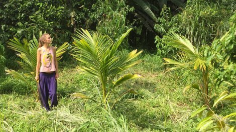 A woman walks in the Terra Frutis fields