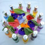 Color Mirrors beside flowers, in a bowl of water