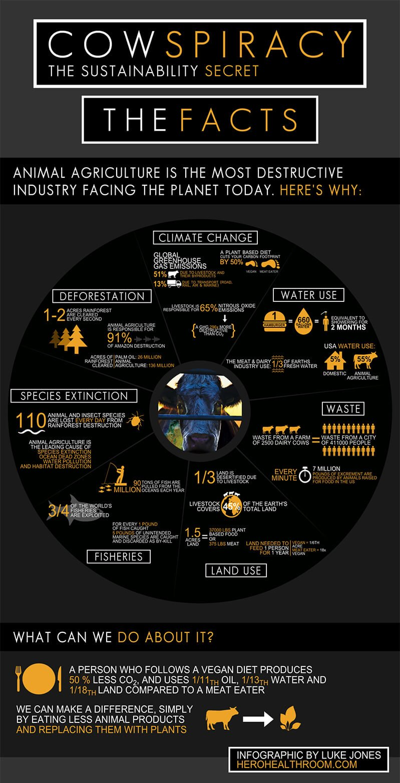 Infographic for Cowspiracy