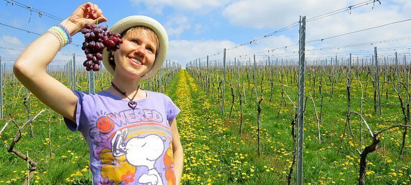 Eva Straub dangles grapes while posing in a field