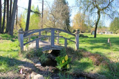 A bridge is photographed on the Uncle Harry's Natural Products land